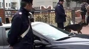 carabinieri-15x8,5-auto-cane-11