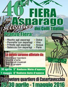 pozzovetere-asparago-fiera-12-235x300