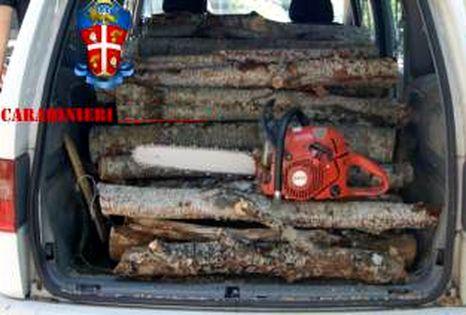 carabinieri-legname-23-466x315